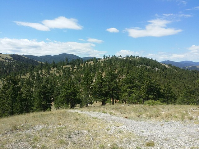 Tour Divide Day 22