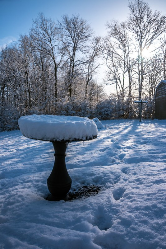 Birdbath with about four inches of snow on it.