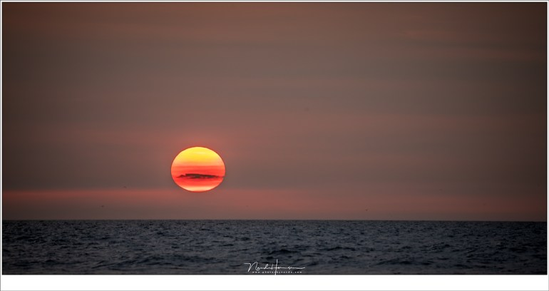 Een rode/gele zon, met een klein wolkje... Nog een paar minuten en de schemering valt in. (400mm | ISO100 | f/9 | 1/80)