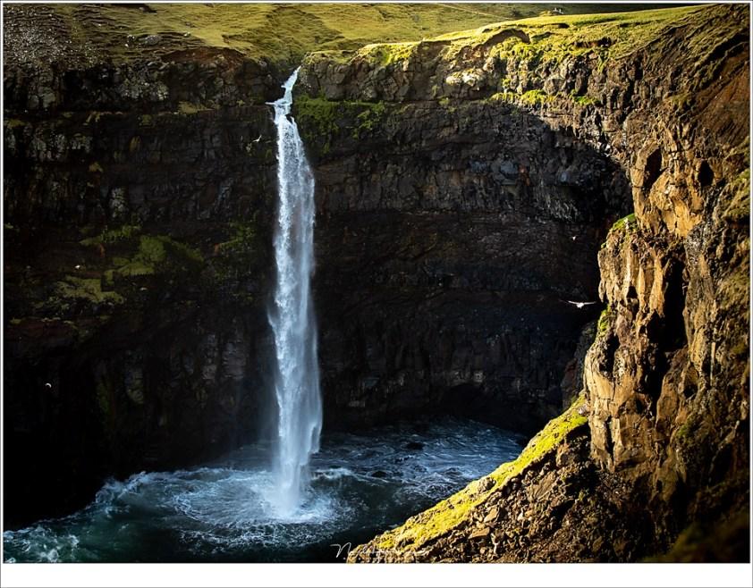 Faeröer eilanden - deel 2, Mulafossur met... papagaaiduikers. Tientallen die rondom de waterval vlogen (70mm | ISO200 | f/4 | 1/400)