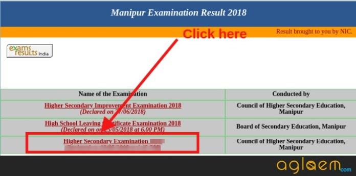 COHSEM HSE Result 2019