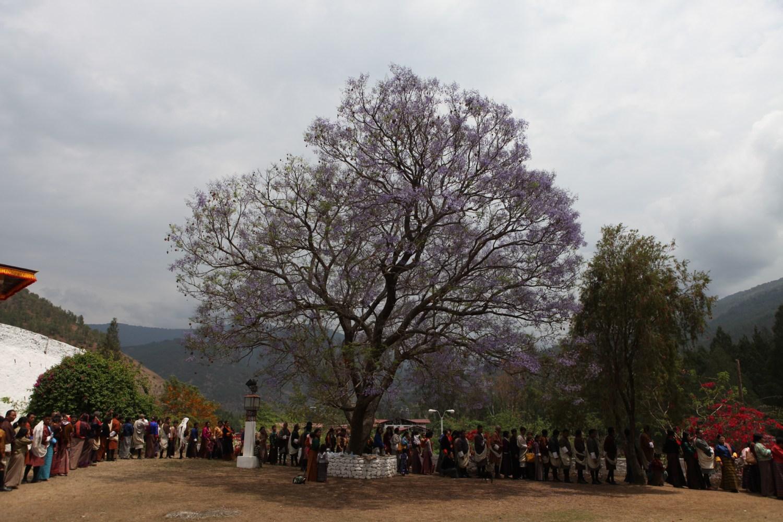 Zhabdrung Kuchoe