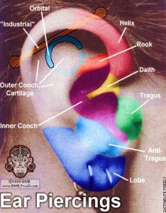Ear piercings by wlowell also chart of various courtesy rh flickr