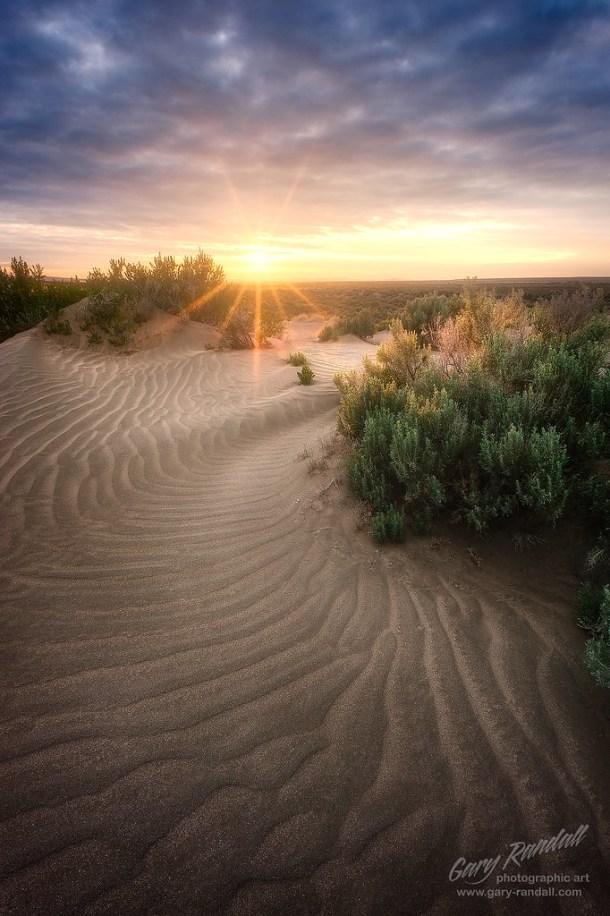 Oregon Desert Dunes
