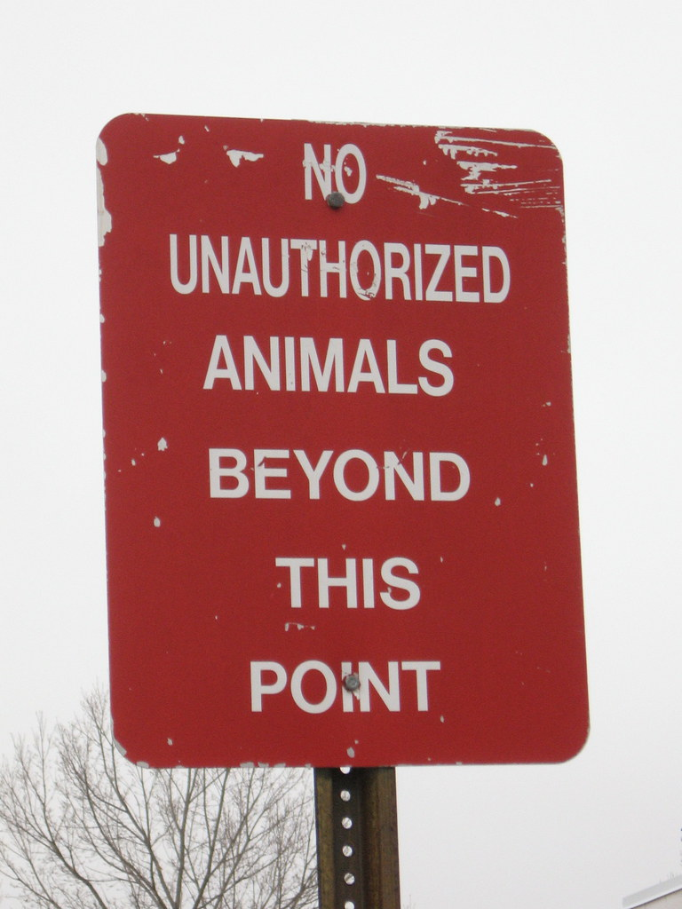 No unauthorized animals beyond this point    and few ani  Flickr