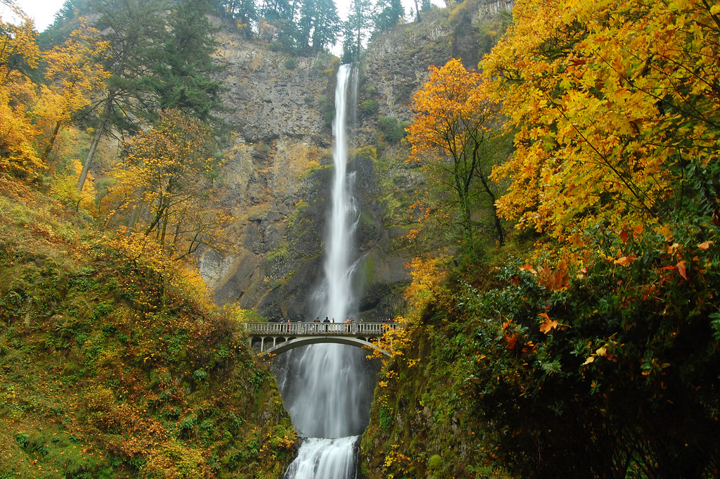 3d Fall Desktop Wallpaper Autumn At Multnomah Falls Multnomah Falls Back To Its