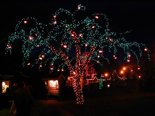 Tree decorated with Christmas lights in Peddlers Village