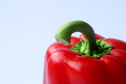 Red pepper  Capsicum commonly called chili pepper