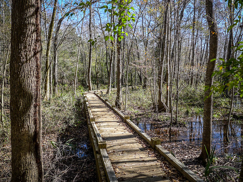 Old Santee Canal Park-103