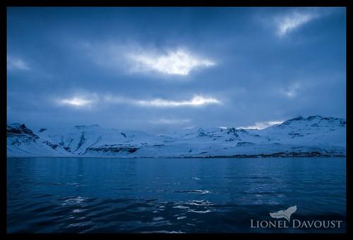 Greenland sea
