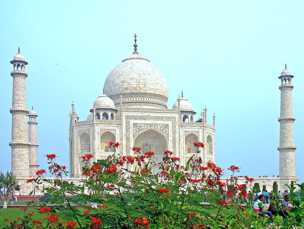 India 6205 Happy Valentines Day PLEASE No Multi