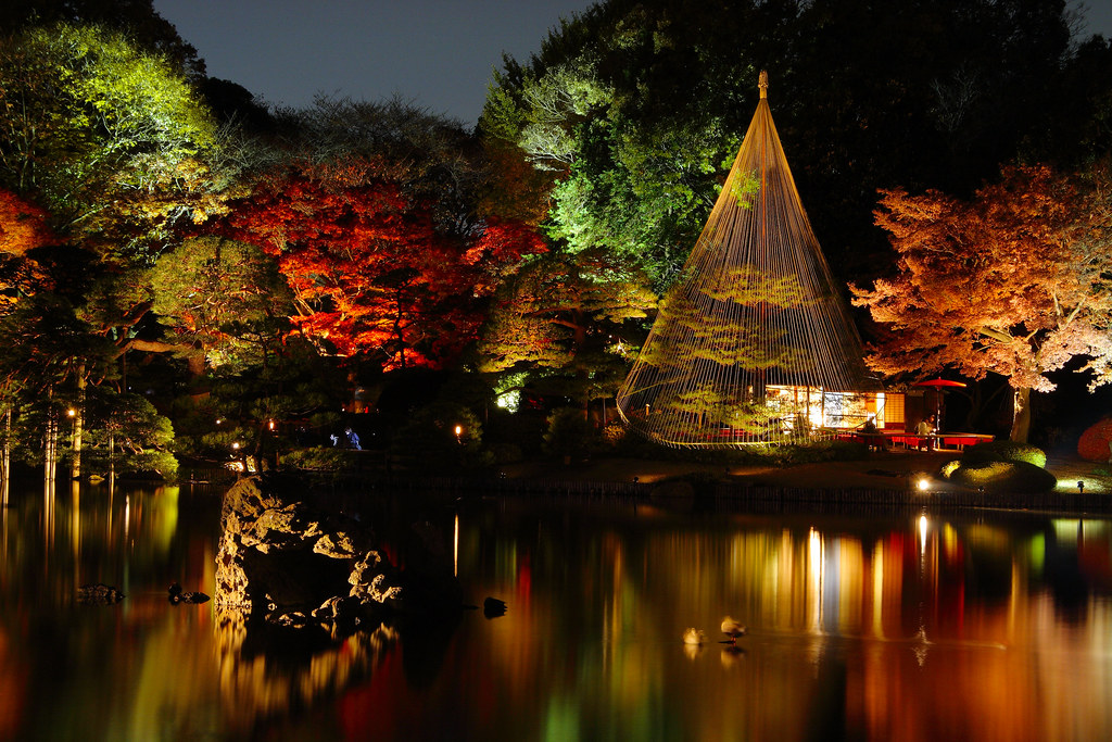 Free Fall Desktop Wallpaper Widescreen Japanese Garden At Night Rikugi En Tokyo Yumi