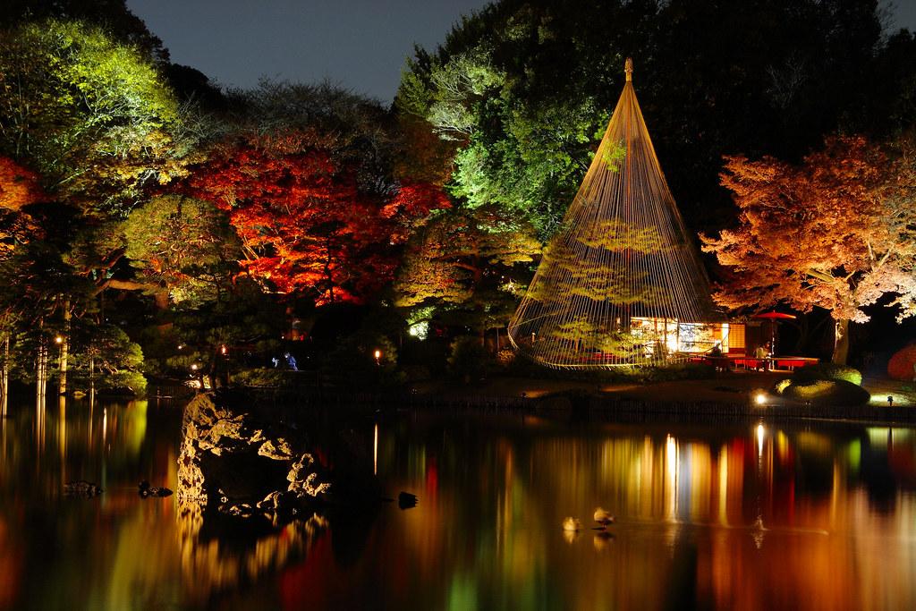 Fall Laptop Wallpaper Japanese Garden At Night Rikugi En Tokyo Yumi