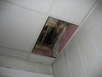 Missing ceiling tile 2 | Shana McDanold | Flickr