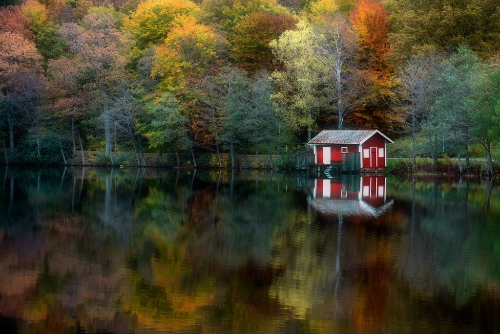 3d Free Fall Nature Wallpaper Autumn Reflection Took This Photo Passing By On My Way