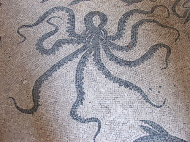 Mosaic octopus Herculaneum  Detail of the mosaic floor