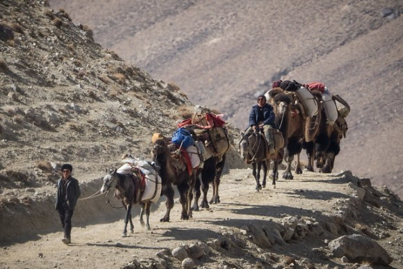 Camel Caravan Wakhan Corridor