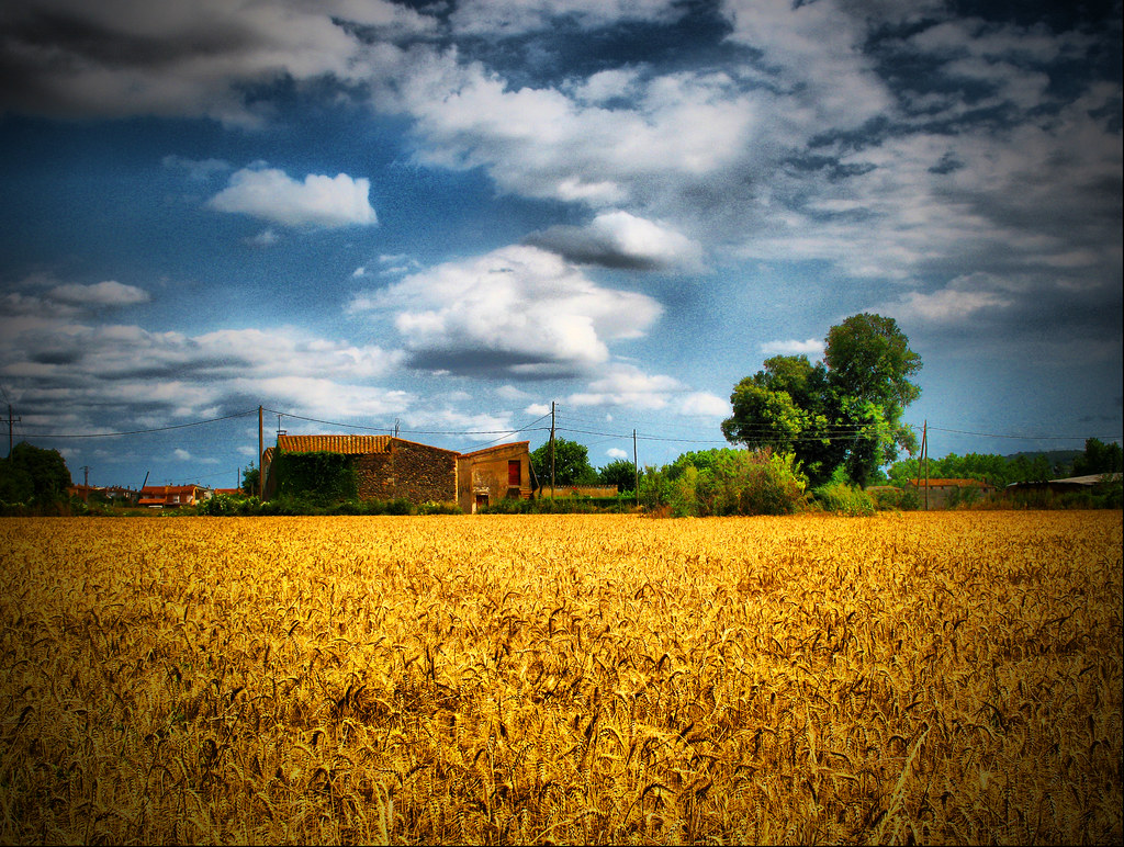 A Simple Rural Landscape  Please consider also viewing