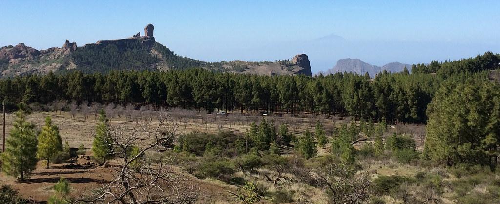 Roque Nublo y su entorno 203 Gran Canaria