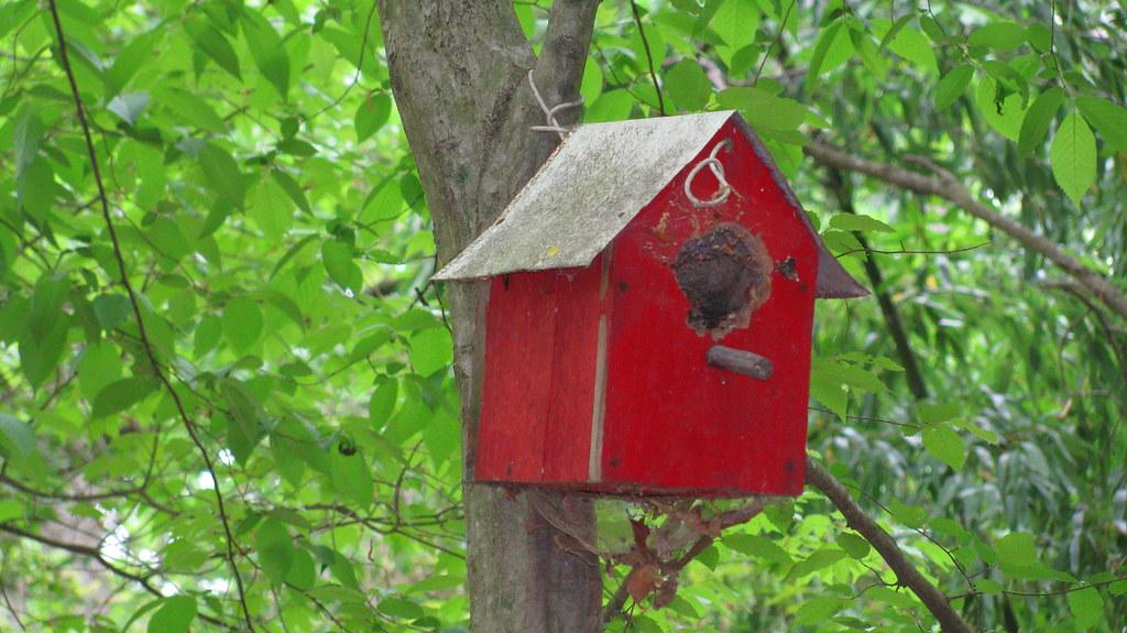 BIRD HOUSE RED  Bird House in Georgia  shankool007  Flickr