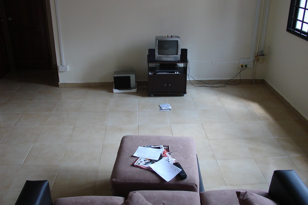 Extreme Minimalism Style  Disclaimer Not my living room