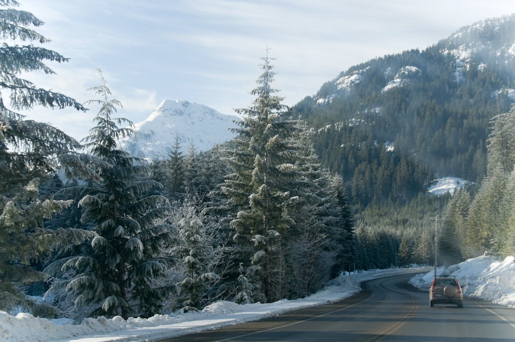 Vancouver Island Landscape in Winter  Scenes from a road