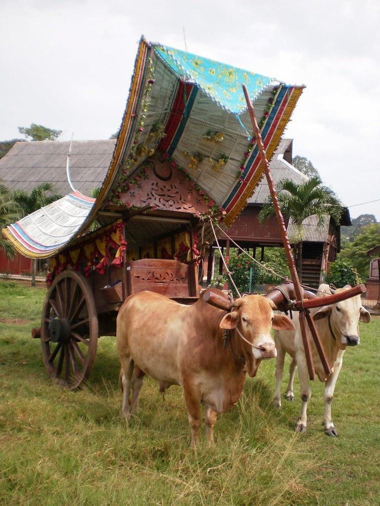 kereta lembu  ee weng  Flickr