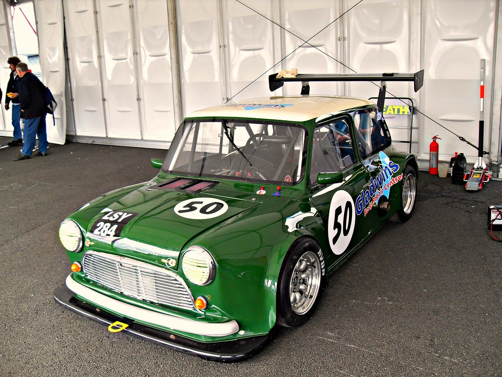 hight resolution of  much modified mini by elstro 88