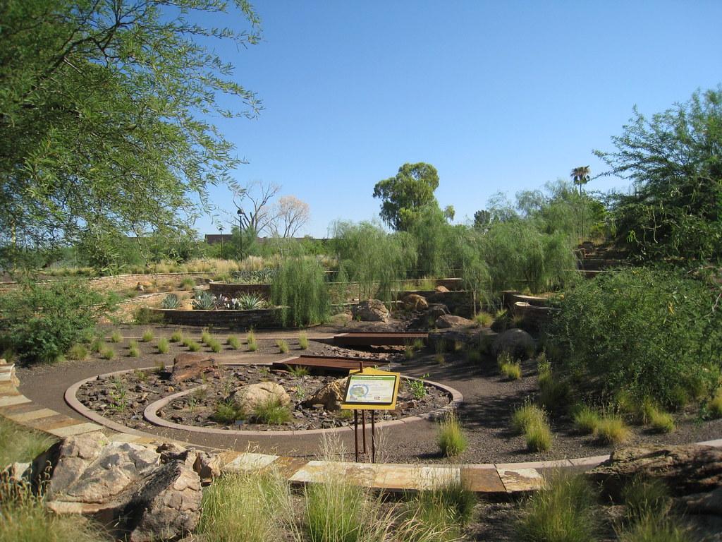 Scottsdale Public Art  Terraced Desert Garden  This