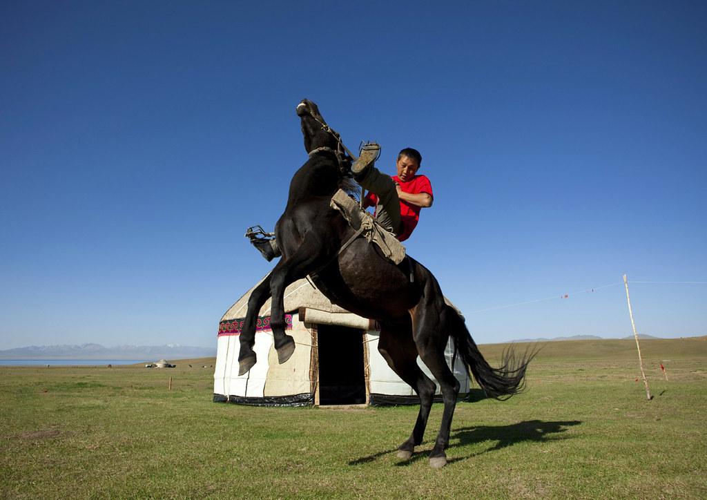 Horseman Rearing Up A Horse Jaman Echki Jailoo Village So  Flickr