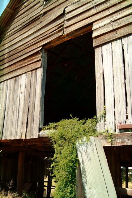 Castalia FL Barn Loft Door  Old Barn loft door near the gh  Flickr