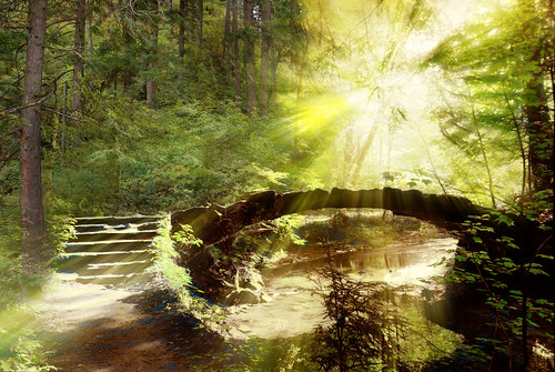 Amys Place Fantasy Bridge  This is a truly ancient image