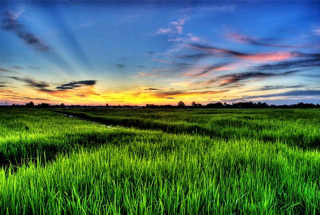 3d Wallpaper Malaysia Sawah Padi Sunset Ver 1 2 Sunset In Sungai Kerawai
