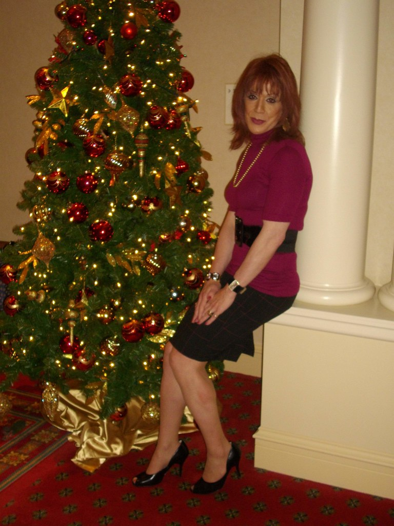 Oh Yes Another Christmas Tree Picture  Taken on 120509