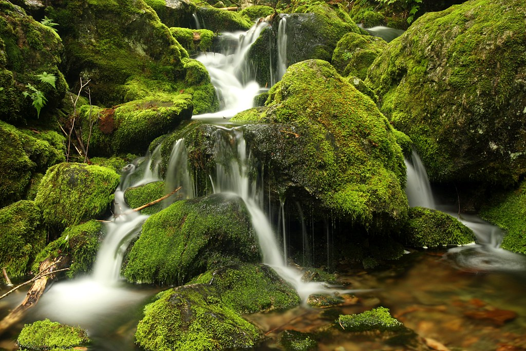 Wallpaper Of Water Fall Rocks Moss Amp Water My Favorite Of My Closer Up Rocks
