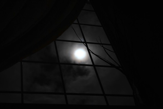 The Moon Window  Our house has the perfect viewport for