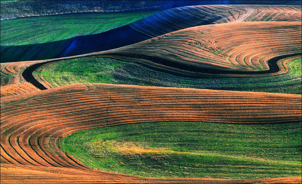 Palouse Washington Landscape Contours  This one is improve  Flickr