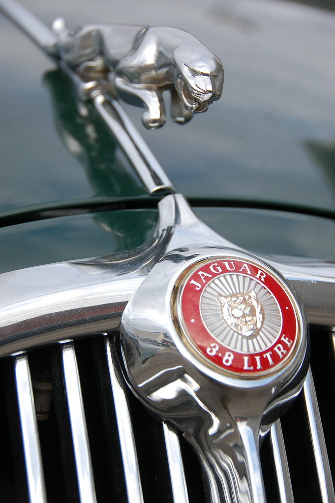 Jaguar 3 8 S Hood Ornament Amp Quot 3 8 Litre Quot Badge This One