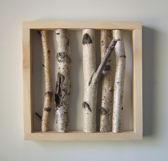 organic wall art white birch forest this is one of my fa flickr