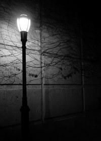 Lamp Post at Night | Lamp Post at night | Neil Golub | Flickr