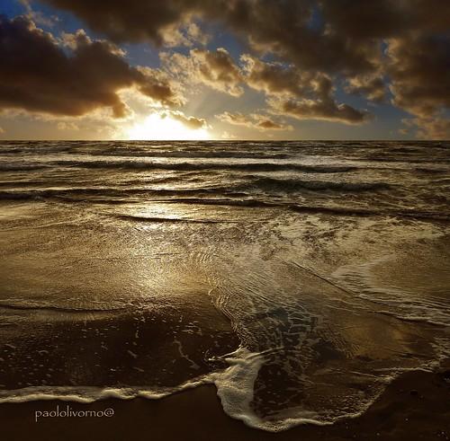 Fantastic Image! Magnifique, Gorgeous Shot, Fabulous Light