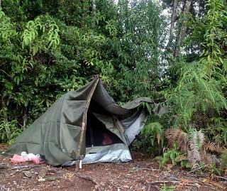 camping on mount pangulubao bukit manja