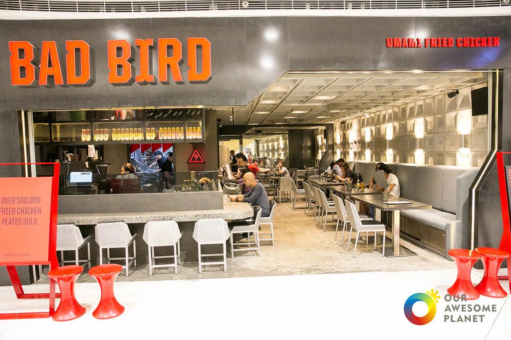 Bad Bird-1.jpg