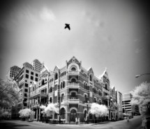 Haunted Driskill Hotel Austin