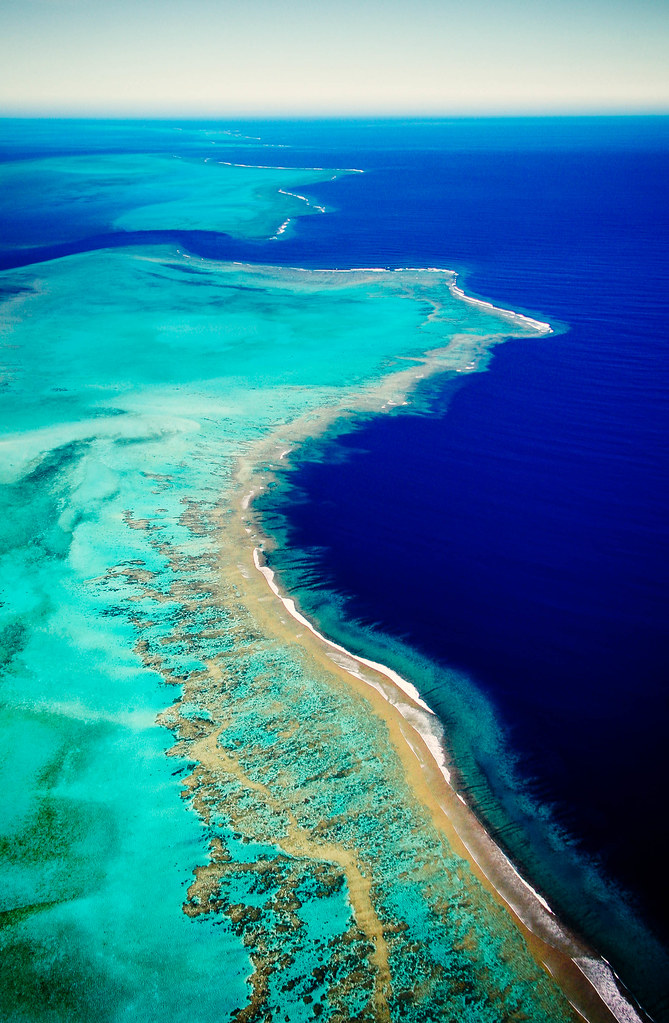 The Blue Lagoon  New Caledonia coral reefs part of the