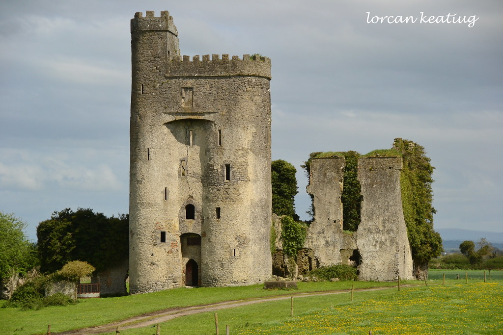 Ballyadams Castle County Laois Ireland  One of the most