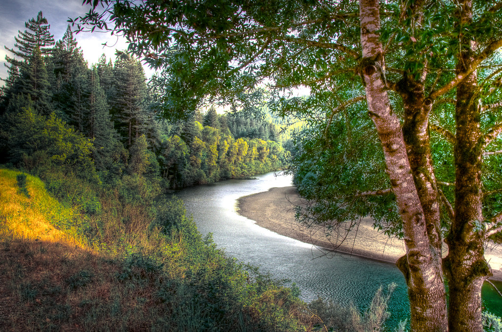 Eel River Humboldt Redwood Forest_tonemapped  Shot from th  Flickr
