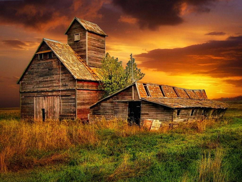 Fall Wallpaper Horses Prairie Barns Grain And Pig Barns Between Pingree And