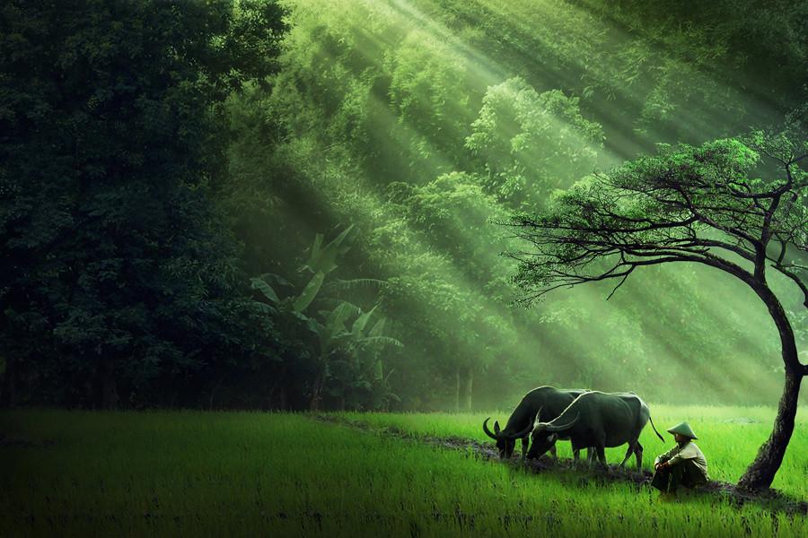 Dalam kedamaian sang alam  I just share about the