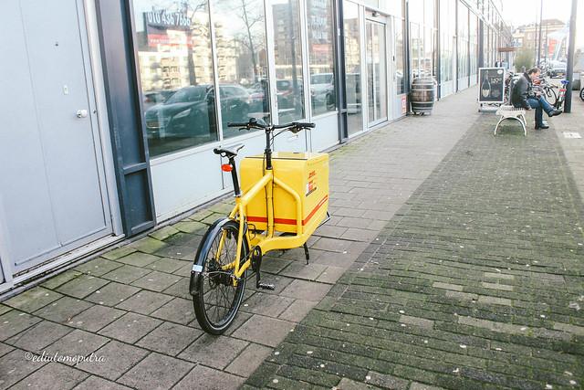 DHL bike roterdam.jpg